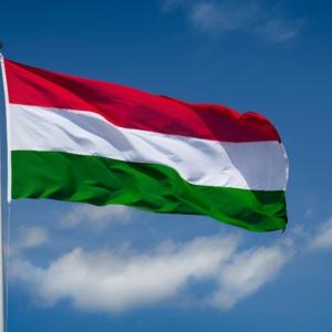 Spedizione Ungheria Shipping to Hungary