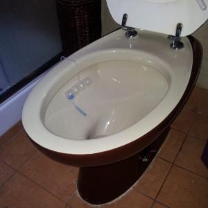 Sedile Wc Copriwater per modello Capricorno bianco marca Tenax